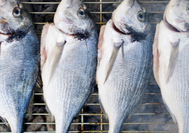 Consejos y trucos para una barbacoa de pescado: mejores pescados y mariscos para asar